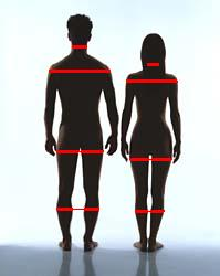 Коэффициент массы тела для женщин калькулятор