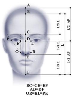 Идеально пропорционального лица