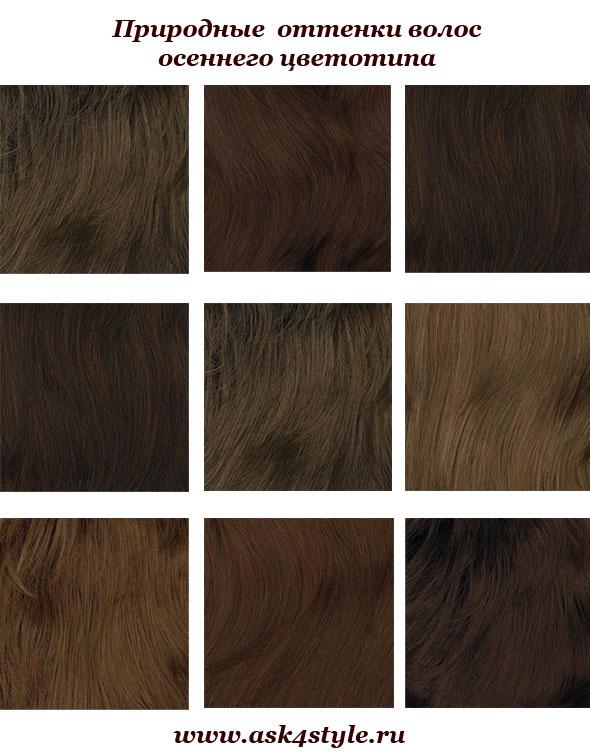 Цвет волос для цветотипа осень