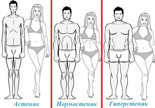 Типы телосложения у женщин: астеническое, нормостеническое, гиперстеническое